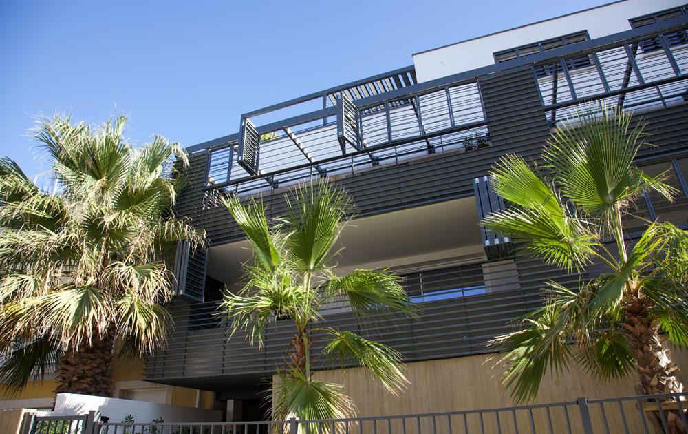 cros delmas realisation palmiers